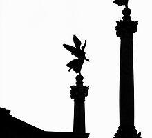 Rome, Italy by markandreani