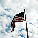 Stars and Stripes Against a Gorgeous Sky by Jane Neill-Hancock