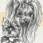 Yorkshire Terrier, Father & Son by BarbBarcikKeith