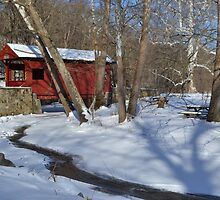 Snow Covered Mingo by wjwphotography