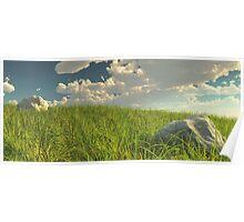 Grassy Field Panoramic Poster