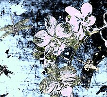 Dragonfly and Orchids. by Vitta