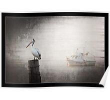 Pelican in Fog Poster