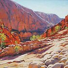 Orminston Gorge - Alice Springs, Central Australia by Graham Gercken