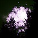 Lavender Fireworks by skreklow
