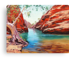 Outback Ghost Gum Canvas Print