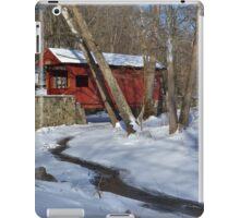Snow Covered Mingo iPad Case/Skin