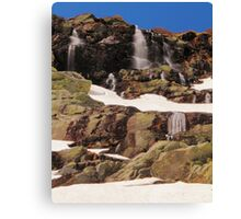 Alpine Landscape Canvas Print