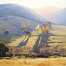 Afternoon Tarana , nsw by Graham Gercken