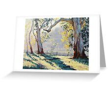 Morning Light Gums Greeting Card