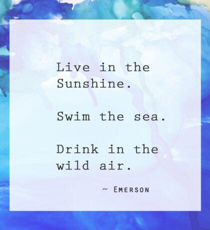Live in the Sunshine. Sticker