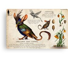 The Jewel Starling Canvas Print