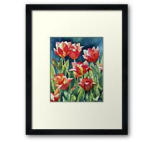 Sunlit Tulips enhanced Framed Print