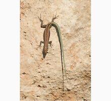 Oertzen Rock Lizard - Rhodes, Greece Unisex T-Shirt
