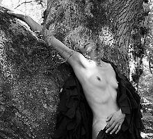 Black Cloak No.3 by David Robinson