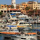Cabo Waterfront by Roupen  Baker