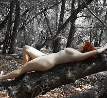 Red No.2 by David Robinson