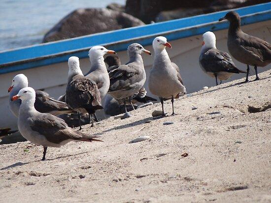 We Are Waiting For The Skipper - Estamos Esperando El Capitán by Bernhard Matejka
