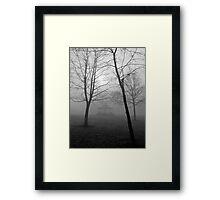 Foggy Morning in the Park Framed Print