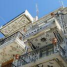 wild balconies by annet goetheer