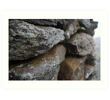 Lichen & Fog Art Print
