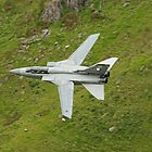 Last flight for the Tornado F3 by Matt Sillence