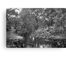 Slough. Three Lakes W.M.A. Canvas Print