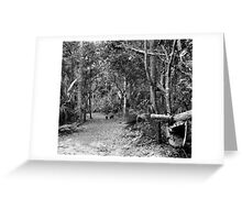 Young Boar. Highlands Hammock S.P. Greeting Card
