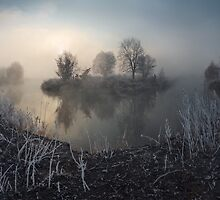 First frost on the river by Stanislav Salamanov