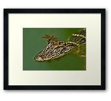 Hey!  This Thing Is Moving Framed Print
