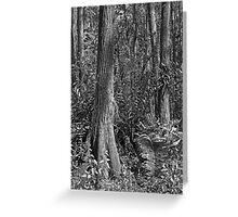 Leather Fern Portrait #2. Shingle Creek. Greeting Card
