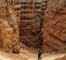 A walk in Bryce Canyon by Peter Hammer