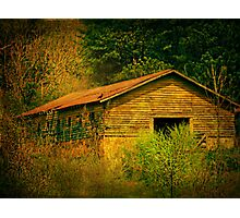 Deep in the woods there sits an abandoned farm Photographic Print