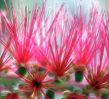 Bottlebrush, Electric by SuddenJim