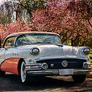 1956 Buick 2 by Stuart Row