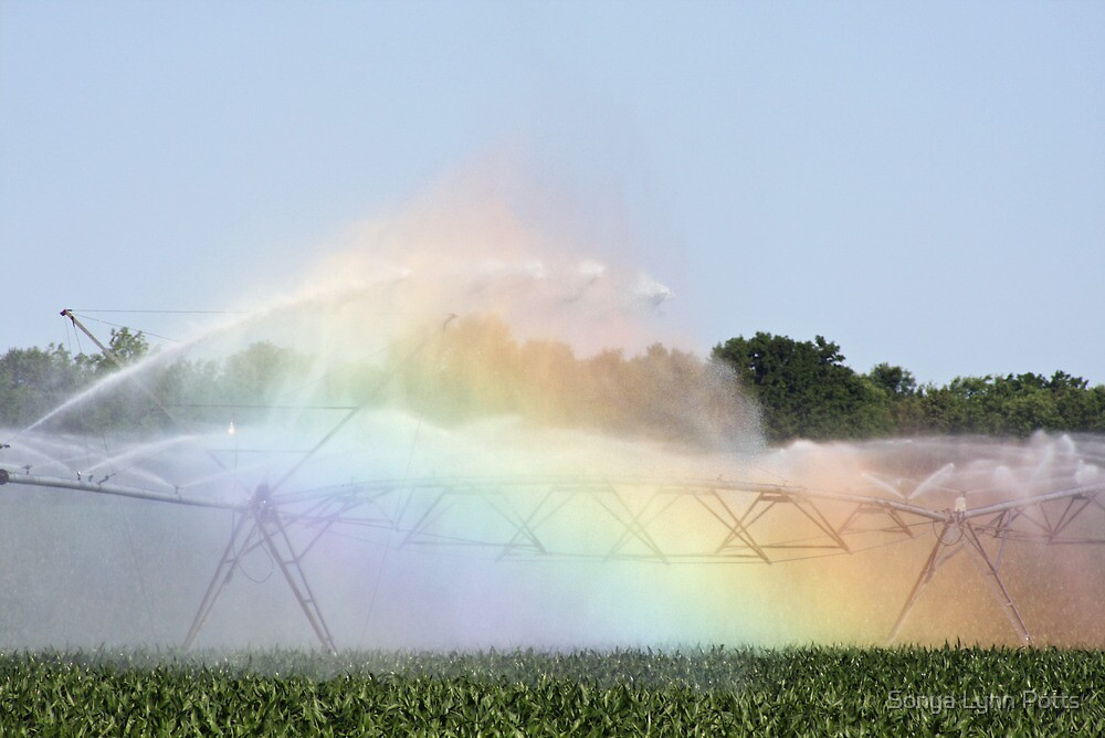 Country Rainbow by Sonya Lynn Potts