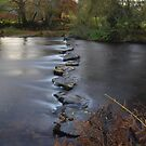 Exmoor: Stepping Stones Across The Barle by Rob Parsons