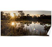 Toowoomba Waterbird Habitat Sunrise Poster