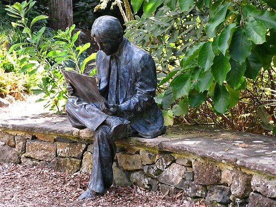 The Reader - Windyridge, Mt Wilson by Marilyn Harris