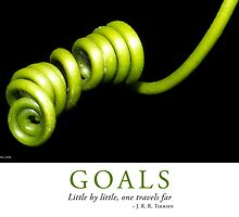 Goals by Lisa Frost