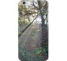 Exmoor: Sunlight through the Trees iPhone Case/Skin
