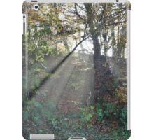 Exmoor: Sunlight through the Trees iPad Case/Skin