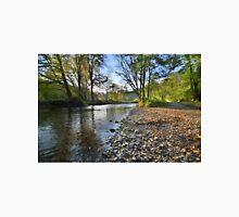 Exmoor: Autumn on the River Barle Unisex T-Shirt