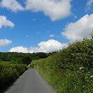 The long road  by supernan
