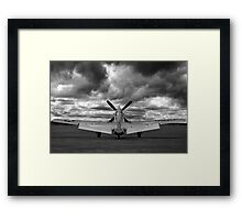 Mustang Dawn Framed Print