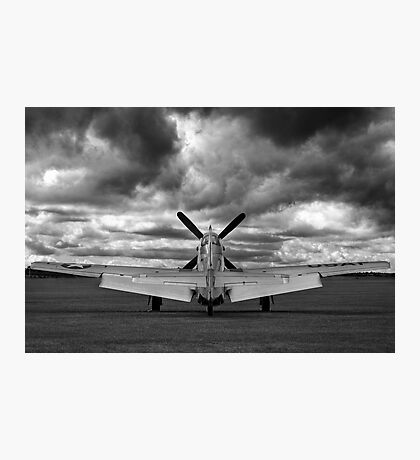 Mustang Dawn Photographic Print