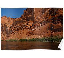 Colorado River, Arizona, USA Poster