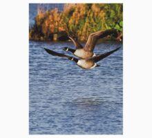 Canada Geese in flight Baby Tee