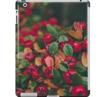 Tiny Winter Berries iPad Case/Skin