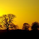 Spring Sunset by SwampDogPhoto